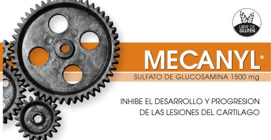 MECANYL