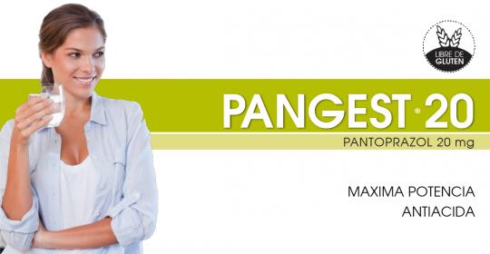 PANGEST 20